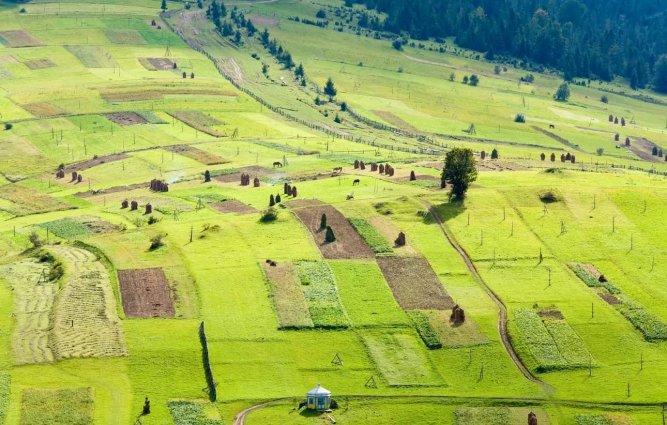Порядок подготовки документов о признании земельных долей невостребованными предлагается скорректировать